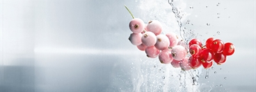 Currants frozen with CRYOLINE technology.